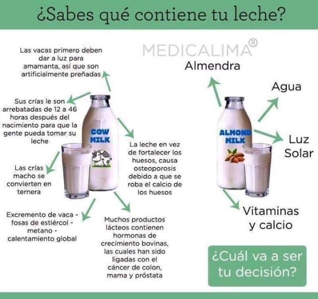 leche3 (2)